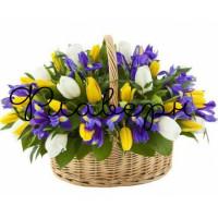 Ирисы и тюльпаны в корзине