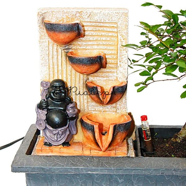 Фикус Микрокарпа Гинсенг Будда Водопад фото