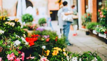 Какой выбрать магазин цветов?
